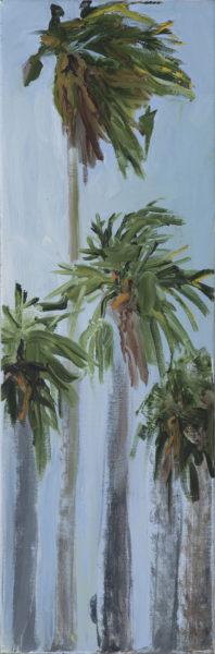 Benicia Palms, 2017