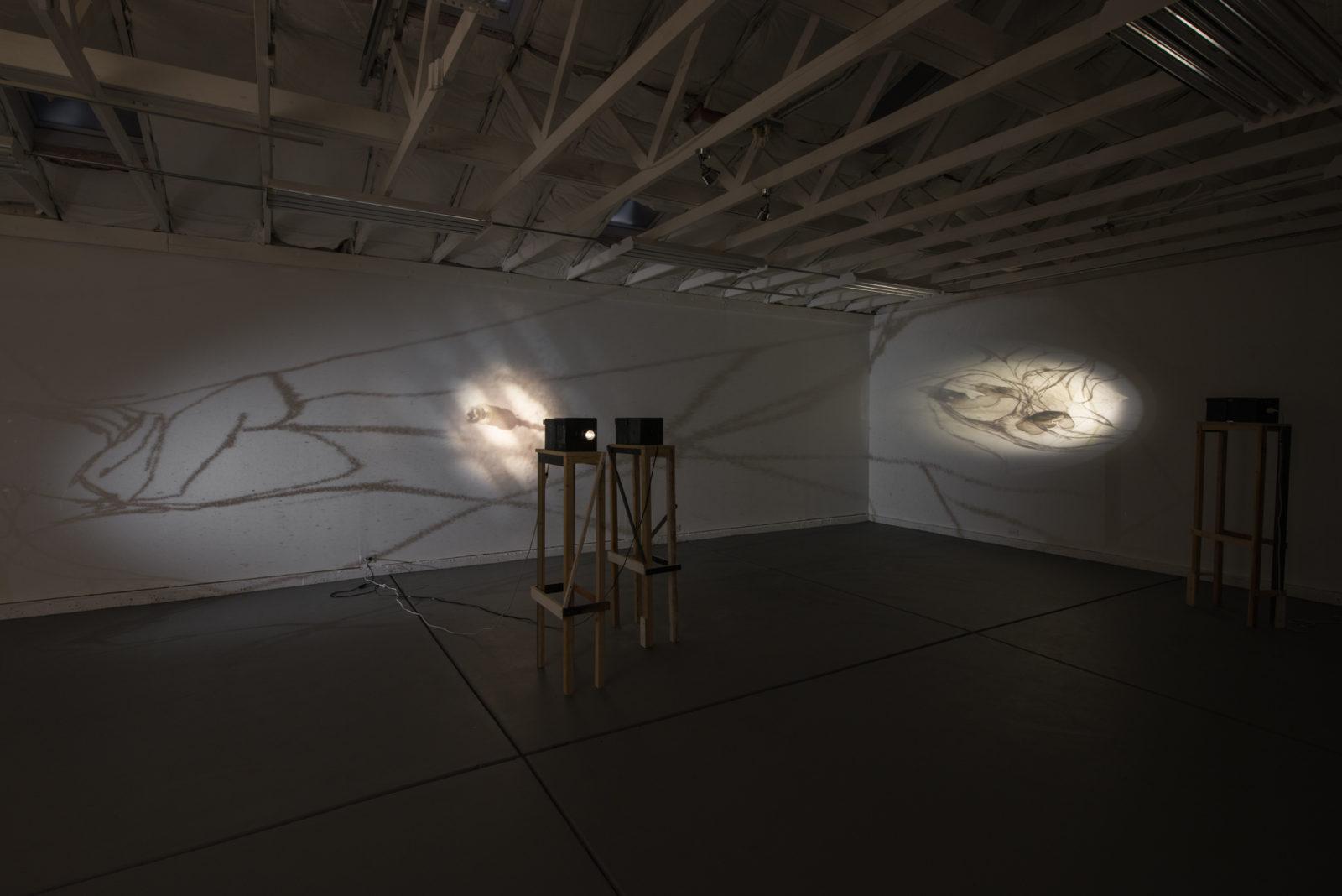 Komorebi (installation view), 2019